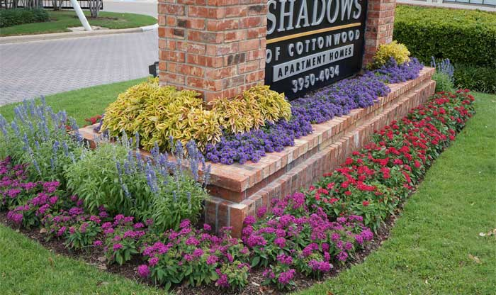 Seasonal color full growth example of commercial landscaping.
