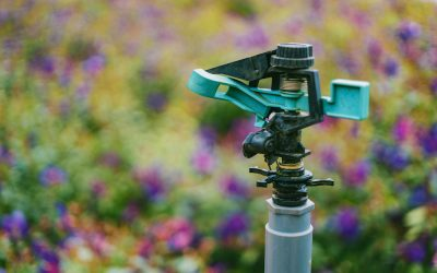 The Hidden Cost of Delaying Irrigation Maintenance