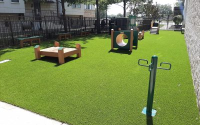 Alara Uptown Dallas New Dog Park Creates a Sense of Community Among Residents and Their Pets