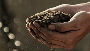 It's Not You. It's The Soil. How Soil Affects Your Irrigation System, Repairs, and Budgeting.