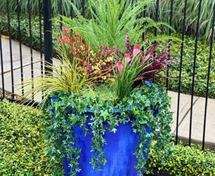 Irrigation Challenges Call for Creative Solutions at a Houston Residential Community